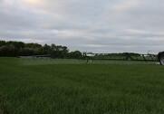 Gefion og Nordsjællands Landboforening er enige om, at kommunen overreagerer når de vil forbyde pesticider. Arkivfoto: Frank Mølby