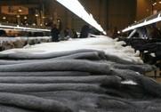 Prisen på minkskind steg med fire procent ved seneste auktion. Arkivfoto: Mads Blenker.