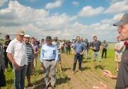 Økologisk sommerbyg, radrensning i korn og hestebønner - er det noget, der virker? Kom og se hvordan demo-marken har udviklet sig siden LMO?s Øko-Plantetræf 7. juni. Foto: LMO