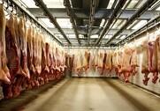 Svinepriserne stiger, men kan det blive ved? Foto: Colourbox