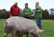 Jens Peter Hermansen (th) er ny leder af Økologisk Landsforenings 'Omlægningstjek'. Indsatsen er en gratis service over for landmænd, der overvejer en økologisk fremtid. Pressefoto.