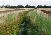 Den nuværende vandløbslov tager hverken højde for klimaændringer og de mange nye miljømål i vandplanerne. Derfor støtter Gefion og Sjællandske Familielandbrug op om en modernisering af vandløbsloven. Arkivfoto.
