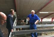 Lars Pedersen viser skatteministeren rundt på Klovborg, som består af 1270 jerseykøer. Pressefoto: Landbrug & Fødevarer.