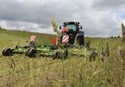 Landbrugsstyrelsen udskyder fristen for slåning og afgræsning af græsarealer fra 15. september til 25. september, når man søger grundbetaling. Arkivfoto. Morten Damsgaard.