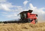 Eksporttallene er til den positive side for henholdsvis soja og hvede, skriver Jyske Markets i deres markedsberetning. Arkivfoto.
