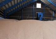 DLG mangler lagerplads til økologisk korn trods en udvidelse af kapaciteten med 50 procent. Arkivfoto.