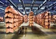 Den afrikanske svinepest i Kina sætter fortsat retningen for prisen på svinekød, hvor eksportværdien er steget med 1,2 milliarder kroner. Arkivfoto.