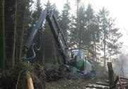 Dansk Skoventreprenør Forening oplever en stigning i medlemsskaren. Arkivfoto: Kim Krasuld