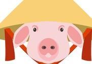 Den moderne del af den kinesiske svineindustri vil komme ud af krisen som en mere effektiv og produktiv sektor, lyder det fra analytikeren Richard Brown. Illustration: Colourbox.